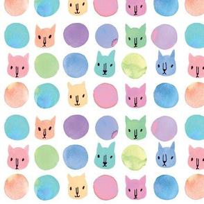 kitten pastel