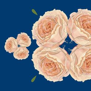 navy roses tea towel