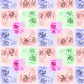 Roses Roses Multi