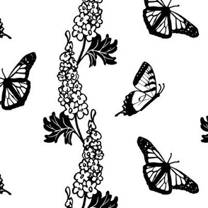 Lg Delphiniums and Butterflies Black and White