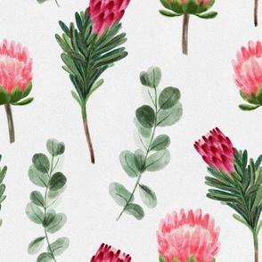 Protea & Eucalyptus