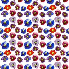 Baby violets • watercolor florals