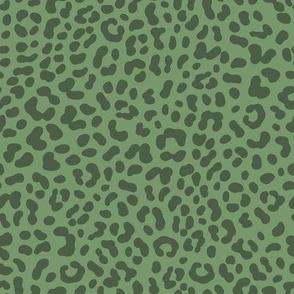 Leopard Print / Jungle Park