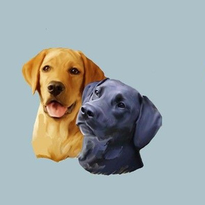 Yellow and black Labrador Retriever heads
