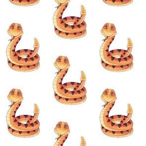 Diamond Back Rattle Snake Pattern