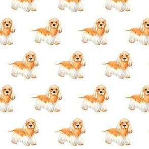 Cocker Spaniel Pattern
