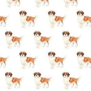 Saint Bernard Pattern