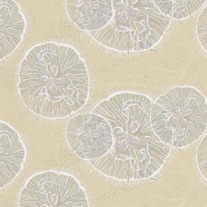sandbar moon jellies