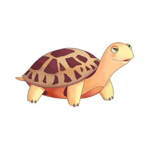 """18"""" Desert Tortoise Design"""