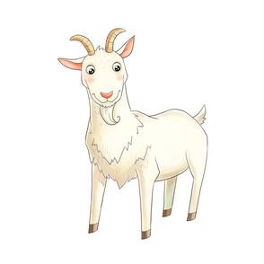 """18"""" Goat Design"""