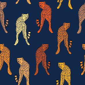 cheetah print  navy