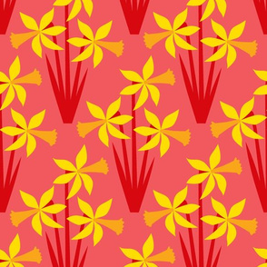 Daffodils on red