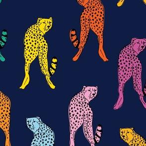 cheetah print // dark blue