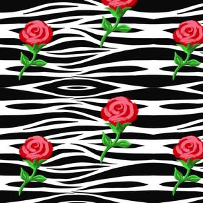 Zebra-Rose Diagnoal