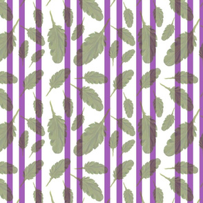 Leafy green with purple stripes