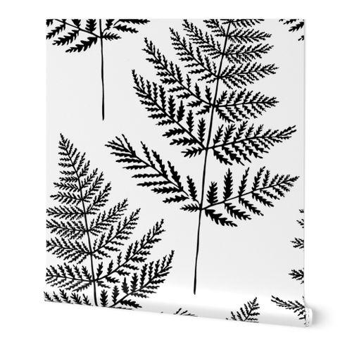 Jumbo Black&White Fern