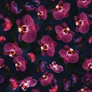Strip stripe