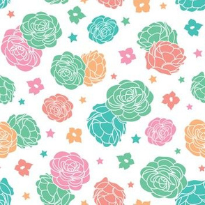 Pink Turquoise Desert rose garden with stars