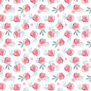 Ibd rose bush 3x3