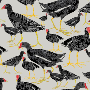 MUD HEN GRAY