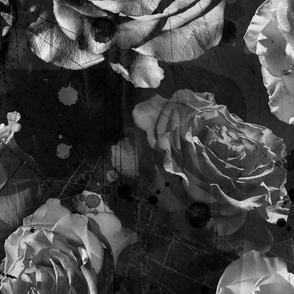 black and white large scale roses