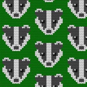 08258869 : knit badger 1x : 00FF00