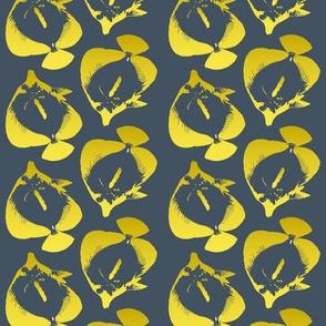 yellow tang on gray