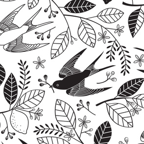 The Lemon Tree - Black & White