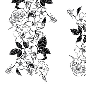 black and white roses wallpaper large FINAL