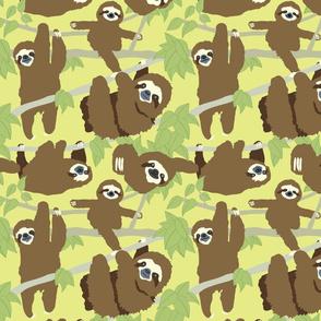 Dance your Sloth Dizzy