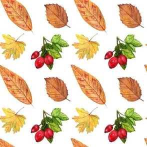 AutumnLeavesAndBerriesPatternWhite
