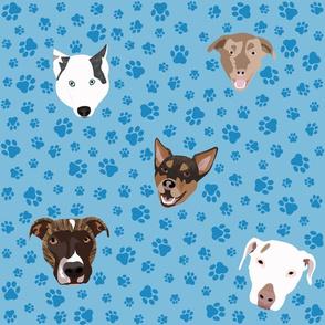 Christines Pups