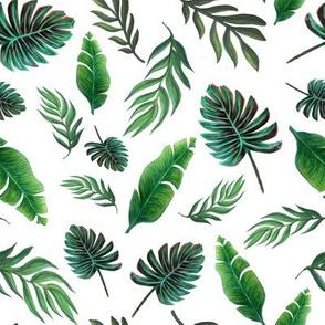 palm watercolor wallpaper //  tropical palm