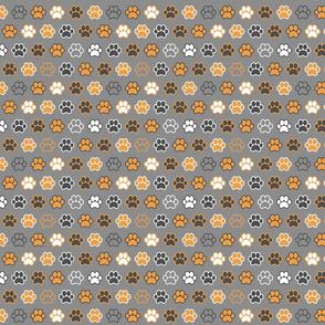 Paws - Orange and Gray