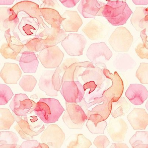 18-03d Vibrant Hexagon Rose Blush Pink Peach Coral Watercolor _ Miss Chiff Designs