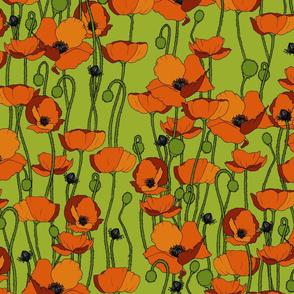 Orange poppy repeat green - medium