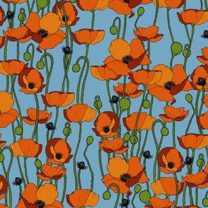 Orange poppy repeat pale blue - medium