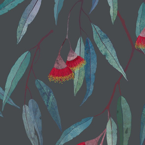 Eucalyptus leaves and flowers on raccoon grey