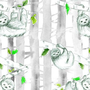 Fuzzy Sloths