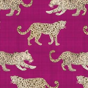 Leopard Parade Magenta