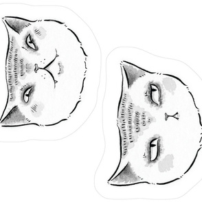 Expressive Cats Plush
