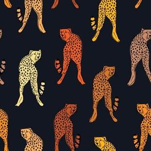 Cheetah print // black