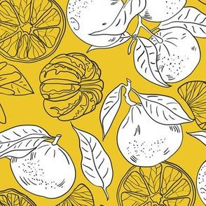 Yellow tangerins
