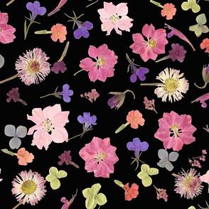 Pink Larkspur night garden