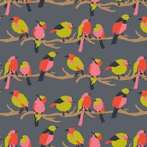Birds Red