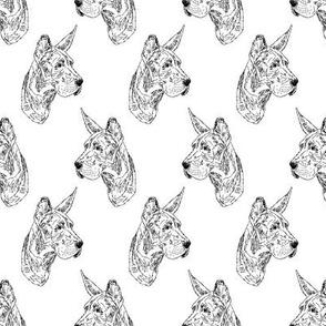 Great Dane puppy head sketch - B/W