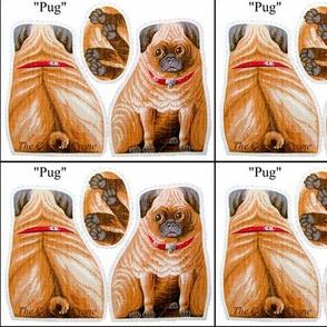 Pug red collar dog