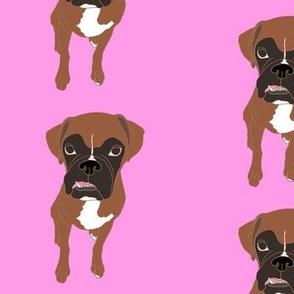 Boxer - Pink