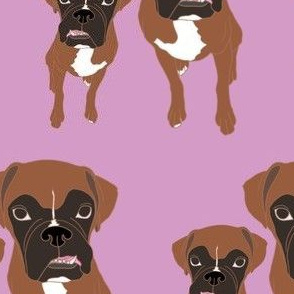 Double Boxers - Pink