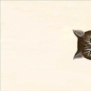 SP towel MIss Kitty twill